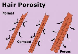 high-porosity-hair