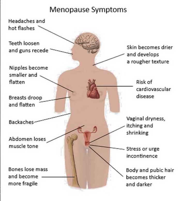 মুখে অবাঞ্ছিত লোম এর কারণ মেনোপজ সিম্পটমস - shajgoj.com
