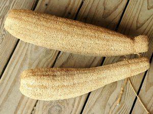 gourd-luffa