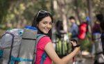 ইকোনমি ট্যুর প্ল্যানিং করে ভ্রমণে যাচ্ছে - shajgoj.com