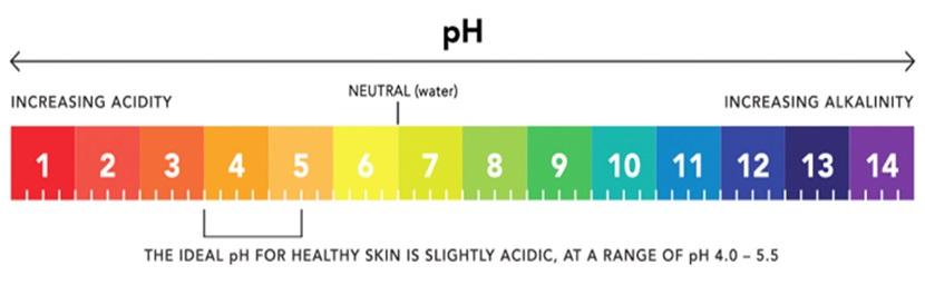 অ্যাপেল সাইডার ভিনেগার ত্বকে pH এর ভারসাম্য ঠিক রাখে - shajgoj