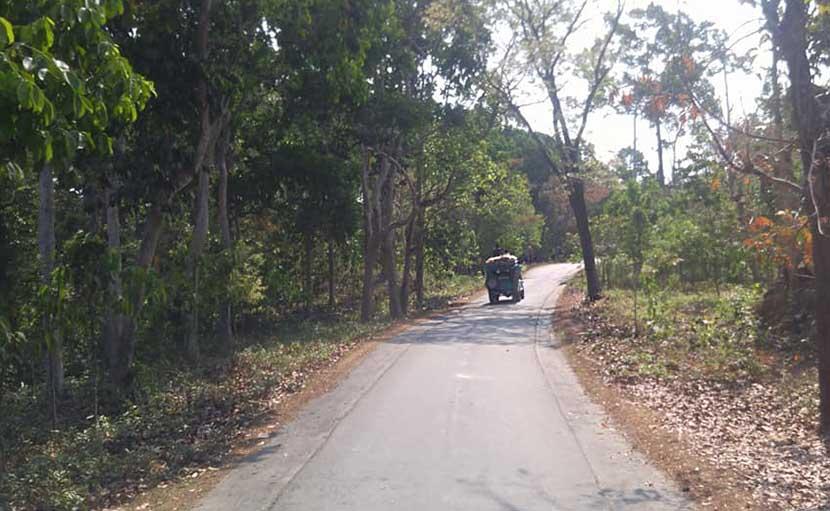 আলী গুহা যাবার রাস্তা - shajgoj.com