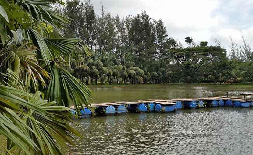 জিন্দা পার্কে পরিবেশবান্ধব সাঁকোর ব্যবস্থা - shajgoj.com