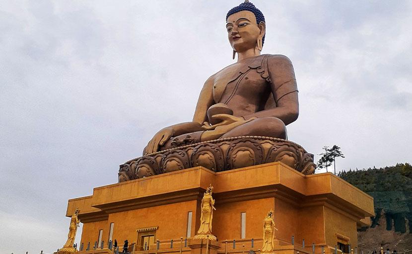 টেম্পল - shajgoj.com